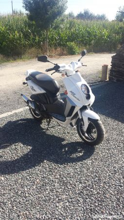 scooter peugeot ludix blaster  vehicules scooters maine-et-loire