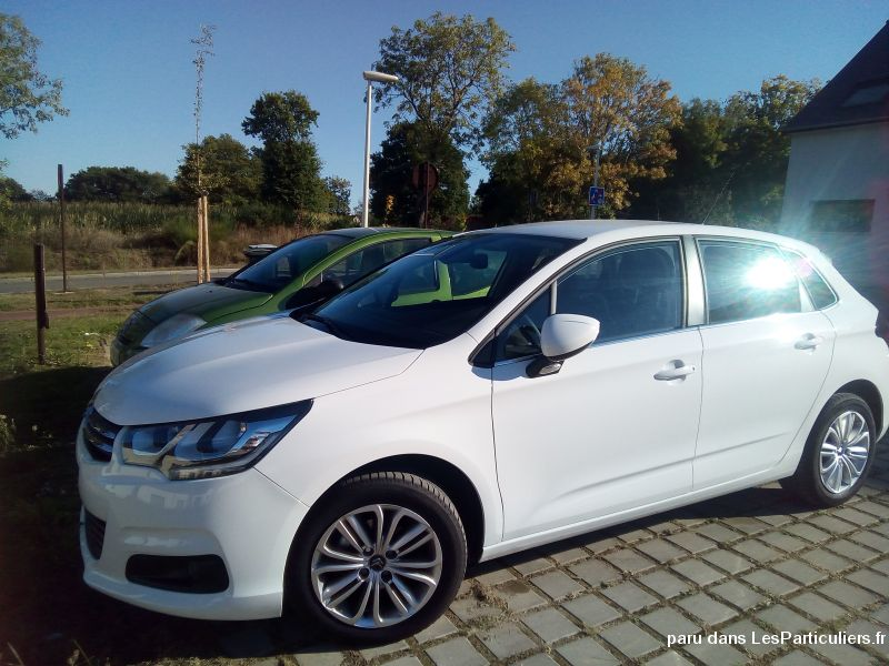 C4 blue hdi 100 feel (collaborateur)  Vehicules Voitures Morbihan