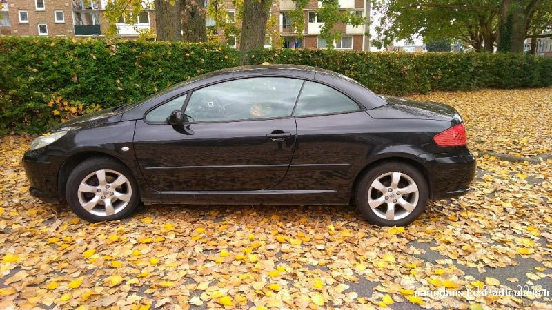 Peugeot 307 CC Vehicules Voitures Nord