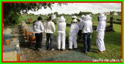 formation en apiculture services evenements autres services seine-maritime