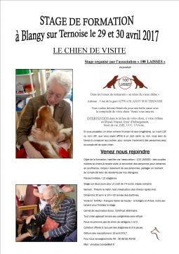 le chien de visite services evenements organisation evenements pas-de-calais