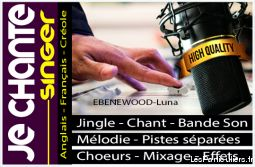 Je chante vos compositions, jingles, logo musical,