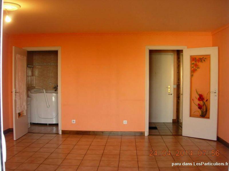 grand f1 35m2 lumineux avec balcon cave lyon 8 immobilier rh ne. Black Bedroom Furniture Sets. Home Design Ideas