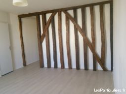 appartement hyper centre tours immobilier appartement indre-et-loire
