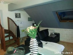 f3 duplex resid. securis�e + garage box individuel immobilier appartement loiret
