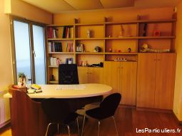 local professionnel t2 tours centre immobilier appartement indre-et-loire