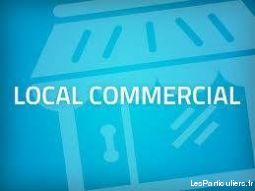 local commercial immobilier co-location gard