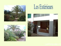 appart f1  immobilier location vacances corse