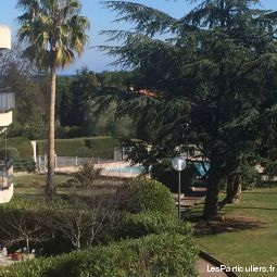 un bel appartement antibes immobilier appartement alpes-maritimes