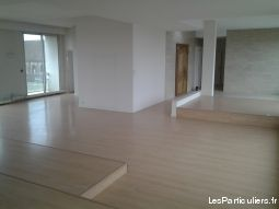 centre ville moulins immobilier appartement allier