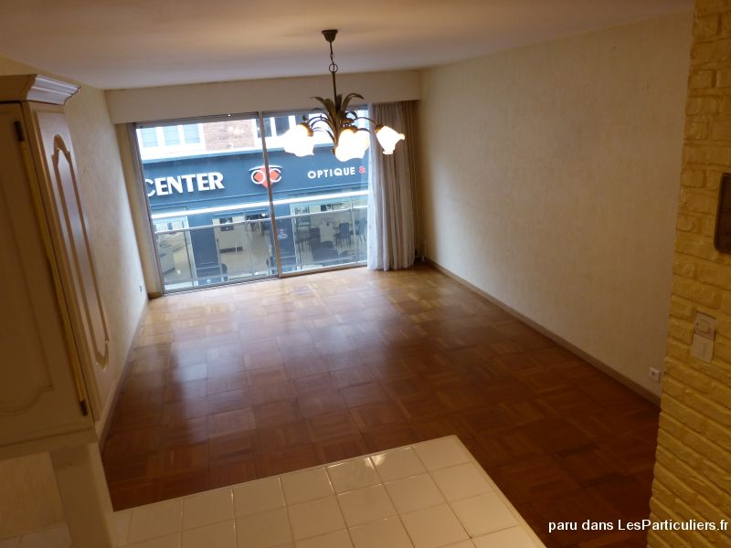 f3 centre dunkerque immobilier appartement nord