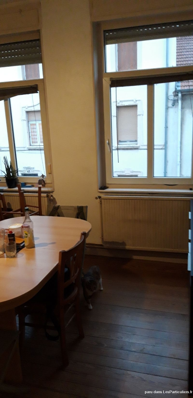 Appartement T2 Montigny-les-Metz 57950 Immobilier Appartement Moselle