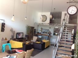 Loft industriel 250 m2 + local stockage 230 m2