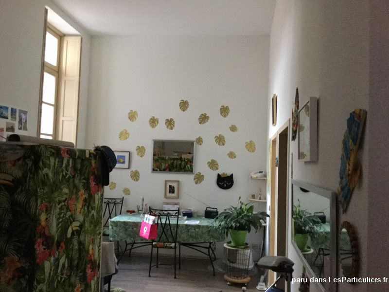 Rare: gd T1 ds res seniors centre ville Toulouse Immobilier Appartement Haute-Garonne