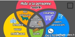 Angele services