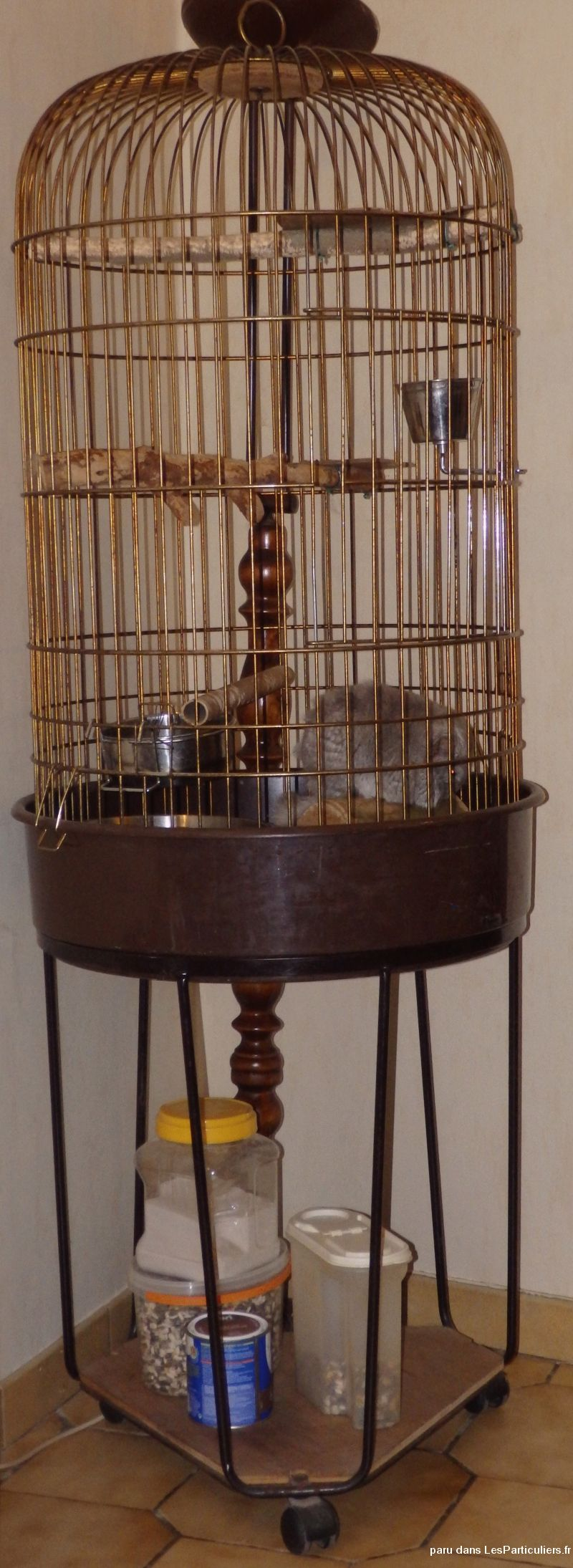 cage � perroquet animaux services accessoires animaux somme