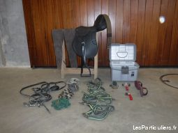 equipement du cheval animaux cheval poney orne