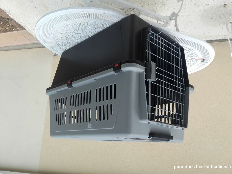Cage caisse transport chien