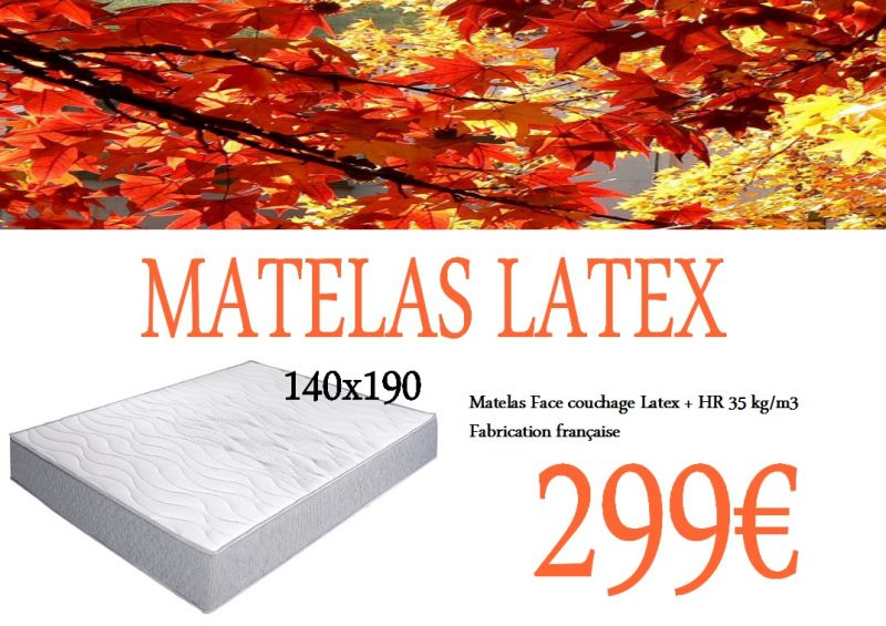 matelas latex 2 personnes 140x190 maison et jardin nord. Black Bedroom Furniture Sets. Home Design Ideas