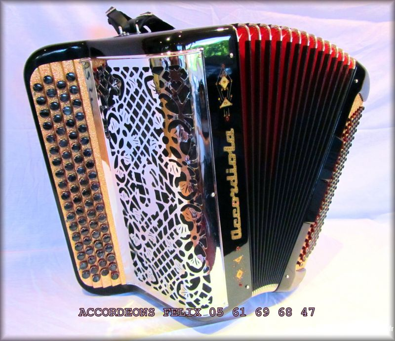 accordeon accordiola type 06 (bo�te de r�sonance)  sport loisirs et culture instruments de musique ari�ge