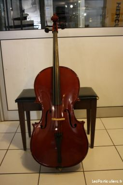 VIOLONCELLE 3 / 4 FACTS