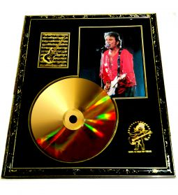 johnny halliday disque d'or collector sport loisirs et culture collection val-de-marne