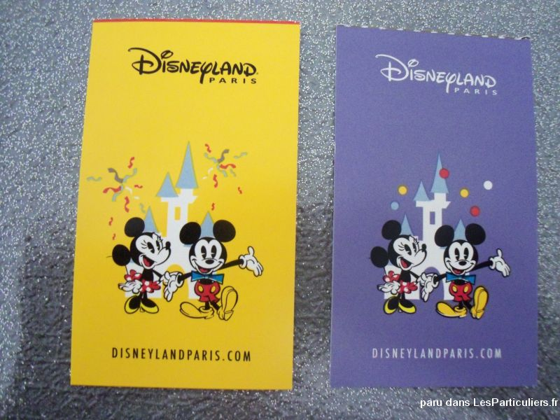 Deux places adultes au parc Disney